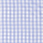 Big Blue Gingham