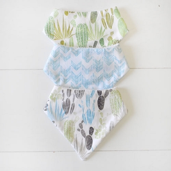 Cactus Bandana Bib Set | Desert Dawn Collection