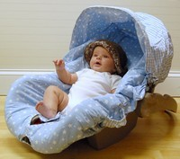 Blue Star/Blue Gingham Infant Carseat Cover