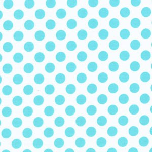 Aqua and White Polka Dot