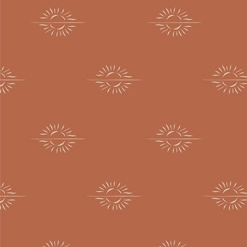 Burnt Orange Fabric | Horizon Mirage Clay